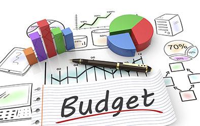Conseil municipal du 28 février: Des finances équilibrées dans Information Dessin_budget_light